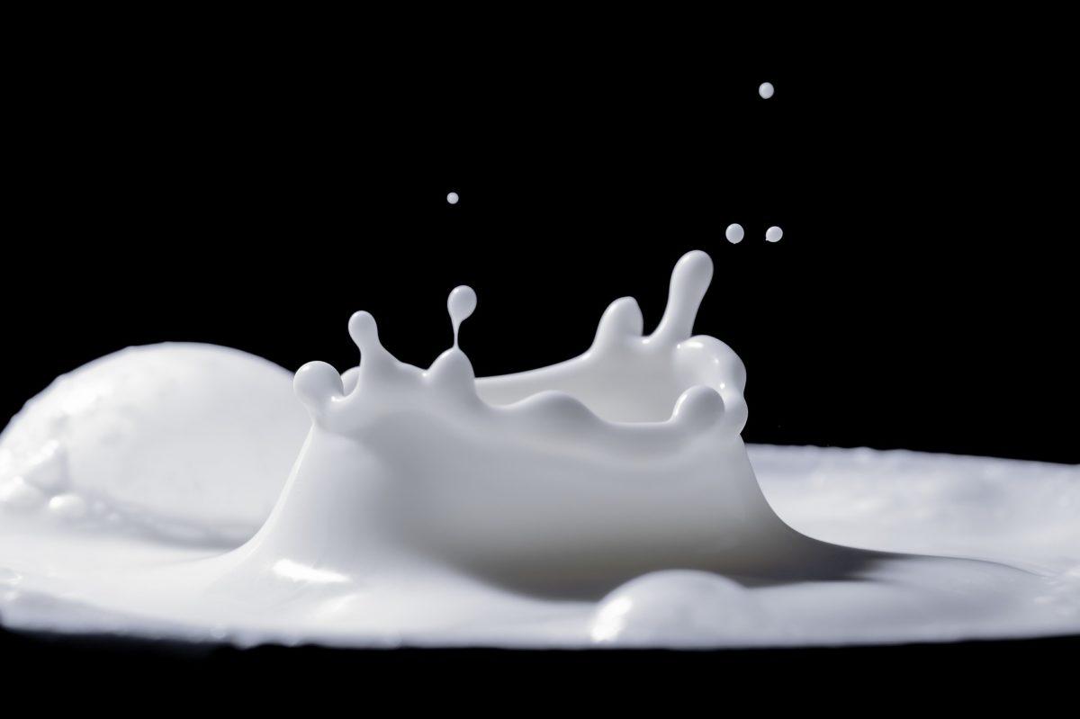 Milk Maker